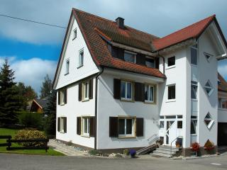 Cozy Condo with Internet Access and Wireless Internet - Villingen-Schwenningen vacation rentals