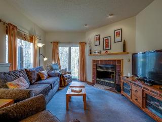 Condo w/ shared pool & hot tub, shuttle to the slopes! - Killington vacation rentals