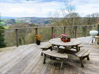 Cozy 3 bedroom Cottage in Lydbrook - Lydbrook vacation rentals