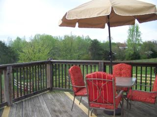 Only 10 Mins from Tryon International Eq Ctr - Tryon vacation rentals