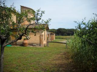 Old country house in Maremma near the beach - Punta Ala vacation rentals