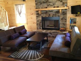 Private Cabin, Hot Tub, Fire Place & Dogs Welcome! - Ellijay vacation rentals