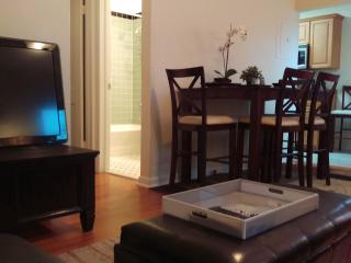 Amazing 1/1 Minutes From Everything!!! - West Palm Beach vacation rentals