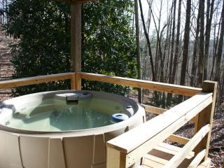 Quiet Cabin, Carter's Lake, Hot Tub, Dogs Welcome! - Ellijay vacation rentals