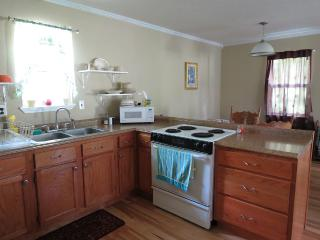 Beautiful House with Internet Access and A/C - Ellsinore vacation rentals
