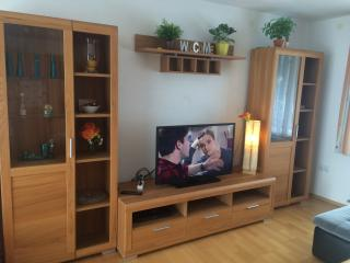 3 bedroom House with Internet Access in Linz - Linz vacation rentals