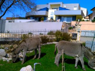 Apartment in modern house with charme of a farm :) - Smrika vacation rentals