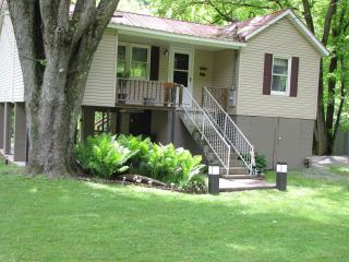 Hinton WV  2 bedroom cabin on Greenbrier River - Hinton vacation rentals