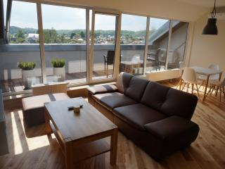 New 2016 Napoleon Hill apartment with terrace - Kaunas vacation rentals