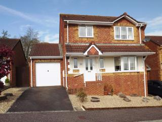 Nice House with Internet Access and DVD Player - Honiton vacation rentals