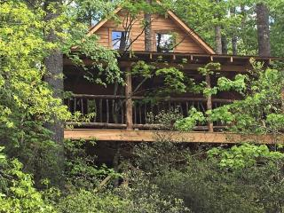 Rushing Waters River Tree house cabin - Tallulah Falls vacation rentals