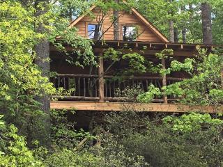 Rushing Waters River Tree house cabin - Tallulah Falls vacation rentals
