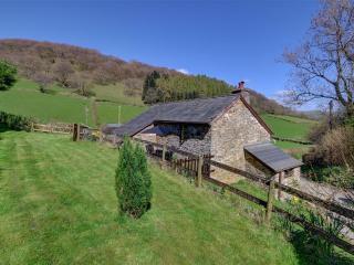 Nice 2 bedroom Cottage in Gwenddwr - Gwenddwr vacation rentals