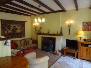 'Le Pelerin' a former pilgrims lodge - Sauveterre-de-Béarn vacation rentals