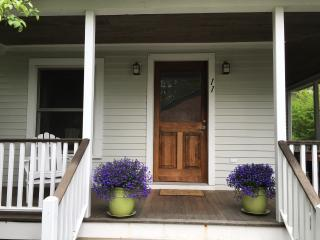 Charming 3 bedroom House in Lakeville - Lakeville vacation rentals