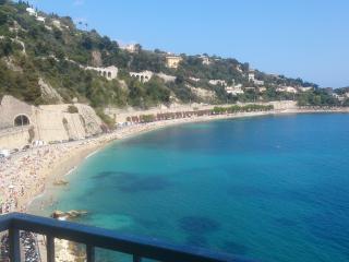 Les flots bleus, beachfront, amazing sea view - Villefranche-sur-Mer vacation rentals