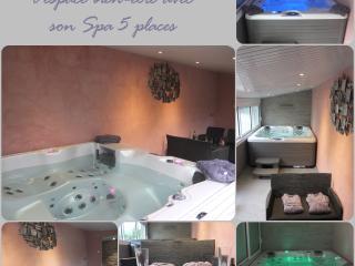 chambre d'hotes de trouga et gite au calme ;spa - Plelan-le-Petit vacation rentals