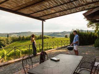 La Pieve Marsina, Chianti, Apartment  La Pieve - Gaiole in Chianti vacation rentals