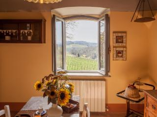 Hilltop Poolside 2 Bedroom Villa in Chianti - Gaiole in Chianti vacation rentals