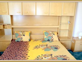 studio flat for rent in Klaipeda - Klaipeda vacation rentals