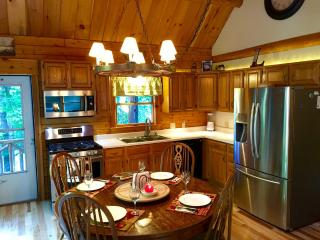 Four season log home 100 yds from Winnepesaukee - Meredith vacation rentals