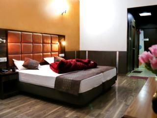 10 bedroom Bed and Breakfast with Internet Access in Ambala - Ambala vacation rentals