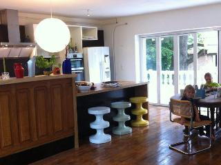 Large, luminous holiday home with garden & forest in village close to chateaux. - Nouans-les-Fontaines vacation rentals