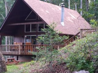 PRIVATE, PEACEFUL, PET-FRIENDLY CABIN - Franklin vacation rentals