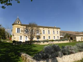 Beautiful 17th Century Chateau near St Emilion - Saint-Etienne-De-Lisse vacation rentals