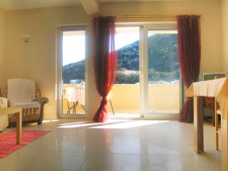 Nice & Friendly 1-bedroom apartment in Budva - Budva vacation rentals