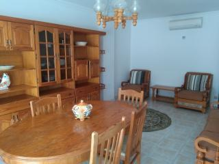 Large 2 bedroom apart w/ AC - Quarteira vacation rentals