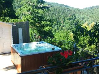 Chianti house, Florence, Siena, Jacuzzi, Tuscany - Gaiole in Chianti vacation rentals