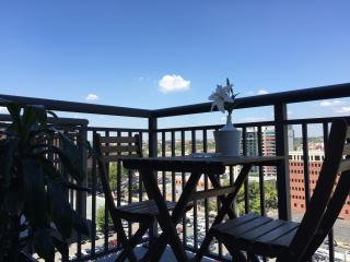 High Rise Luxury Penthouse Apartment - Washington DC vacation rentals