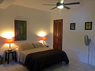 Spacious Studio w/Full Kitchen Close to Beach - Puerto Morelos vacation rentals