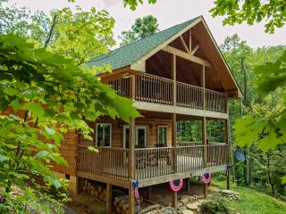 Log Cabin in Smokies Pet Friendly free Wifi - Sevierville vacation rentals