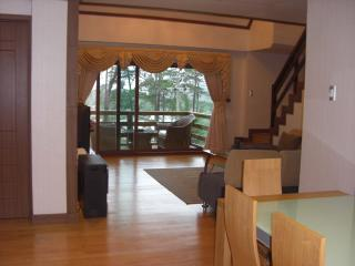 Prestige Vacation Apartments: Luxury Penthouse - Baguio vacation rentals
