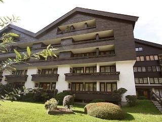 2 bedroom Condo with Internet Access in Bad Hofgastein - Bad Hofgastein vacation rentals