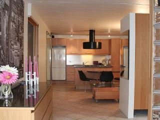 Nice Condo with Internet Access and Washing Machine - Reykjavik vacation rentals