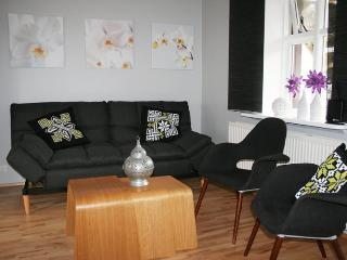 Central Apartment - Reykjavik vacation rentals
