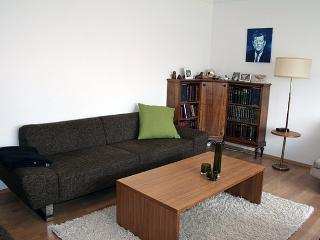 Cozy 1 bedroom Condo in Reykjavik - Reykjavik vacation rentals