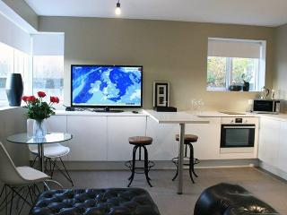 Beautiful Reykjavik House rental with Internet Access - Reykjavik vacation rentals
