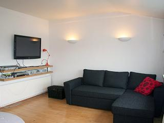 Cozy Down Town - Reykjavik vacation rentals