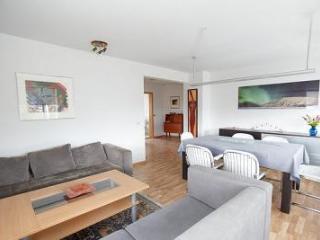 Modern Apartment - Reykjavik vacation rentals