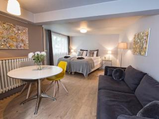 Embassy Studio - Reykjavik vacation rentals