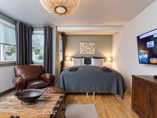Nice 3 bedroom Condo in Reykjavik - Reykjavik vacation rentals