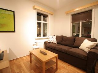 Cozy Condo with Internet Access and Washing Machine - Reykjavik vacation rentals