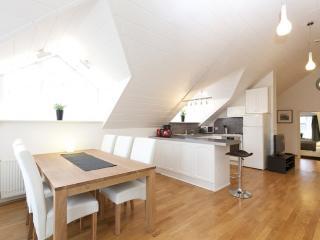 Laugavegur - 2 bedroom apartment - Reykjavik vacation rentals