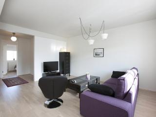 Grettisgata Two-Bedroom Apartment - Reykjavik vacation rentals