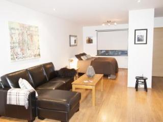 Charming Reykjavik Condo rental with Internet Access - Reykjavik vacation rentals