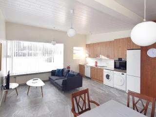 Nice Condo with Television and Parking - Reykjavik vacation rentals